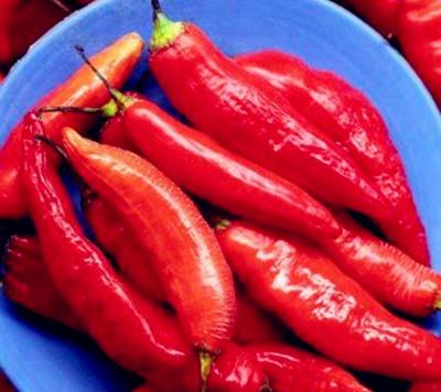 辣椒。图片来源:互联网