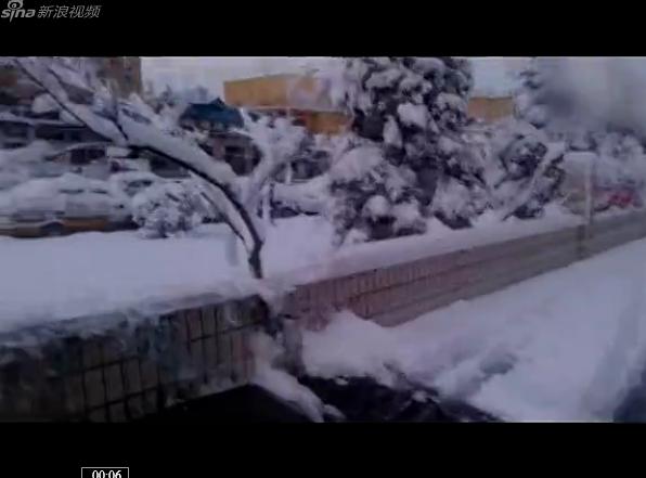 北京又下雪了,一夜的雪,拔脚都没了
