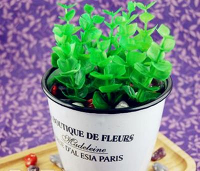 食用油桶花盆图片欣赏
