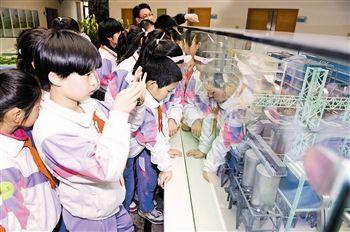 雷锋小学的学生参观利用垃圾发电的泰达环保公司