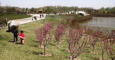 天津滨海新区塘沽森林公园成郊游好去处