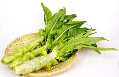 长叶莴苣。图片来源:互联网