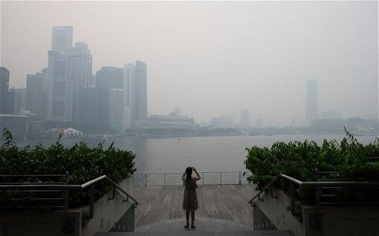 新加坡雾霾导致旅游景点歇业 游客数量骤减(图