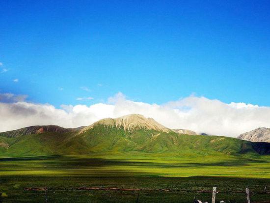 祁连大草原