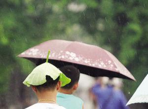 昨日,本市迎来雷阵雨天气,突来的降雨让不少在外的市民猝不及防,但是连日来的闷热也被一扫而去,凉爽在其中。
