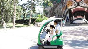 动物园内儿童驾驶观光旅游车的现象比比皆是