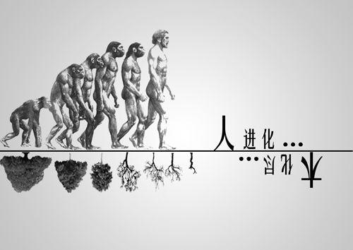 公益广告大赛平面组作品 王雪婷:木图片