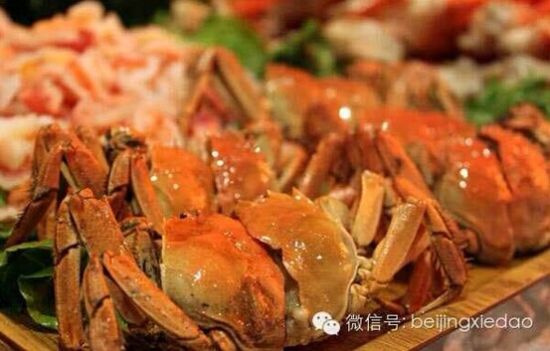 北京蟹岛第十六届螃蟹节将于9月6号开幕_新浪天津文娱