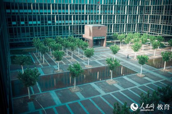 天大新校区图书馆外景